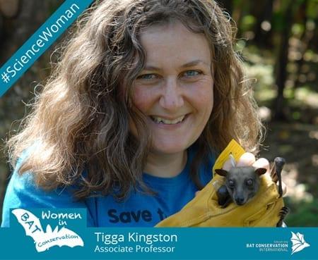 Tigga Kingston