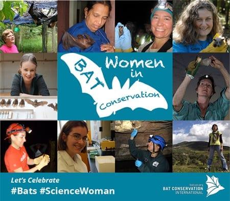 Women in bat conservation images