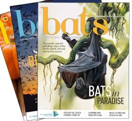 Bats magazine
