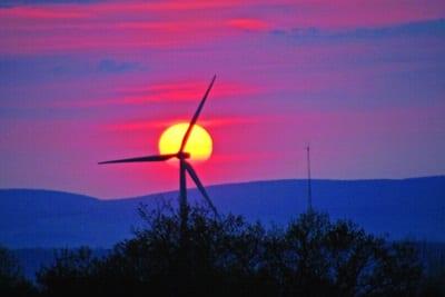 Wind turbines Photo Michael Schirmacher